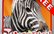 AngryZebra