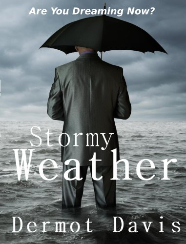 Stormy Weather: A Novel by Dermot Davis
