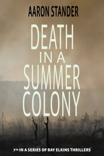 Death in a Summer Colony (A Ray Elkins Thriller Book 7) by Aaron Stander