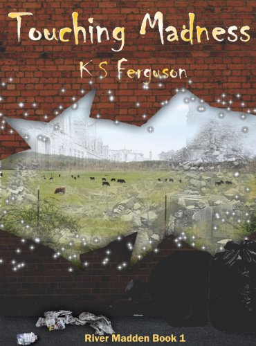 Touching Madness (River Madden Book 1) by K S Ferguson