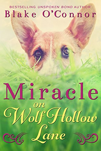 Miracle on Wolf Hollow Lane by Blake O'Connor