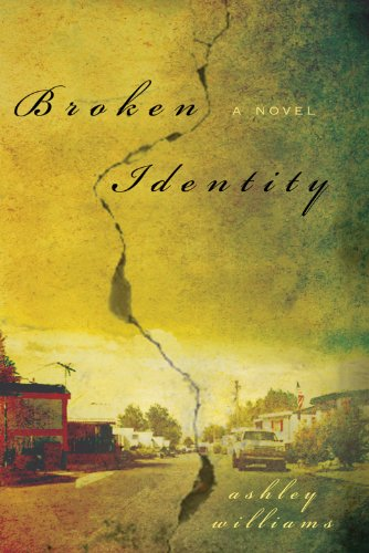 Broken Identity by Ashley Williams