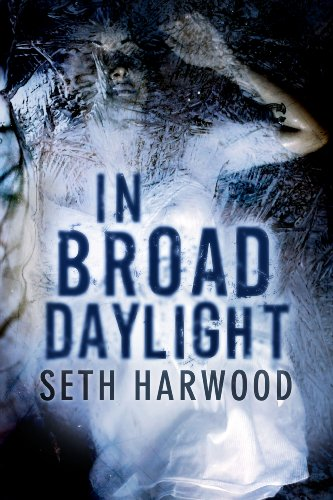 In Broad Daylight by Seth Harwood