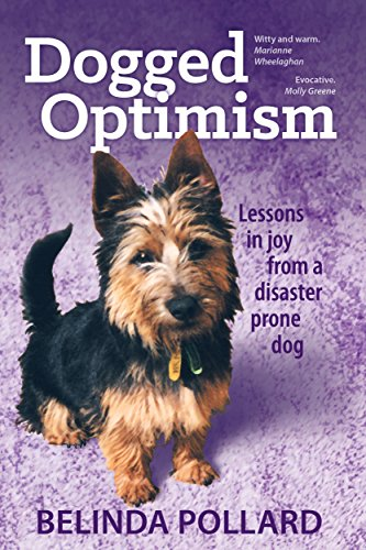 Dogged Optimism: Lessons in Joy from a Disaster-Prone Dog by Belinda Pollard