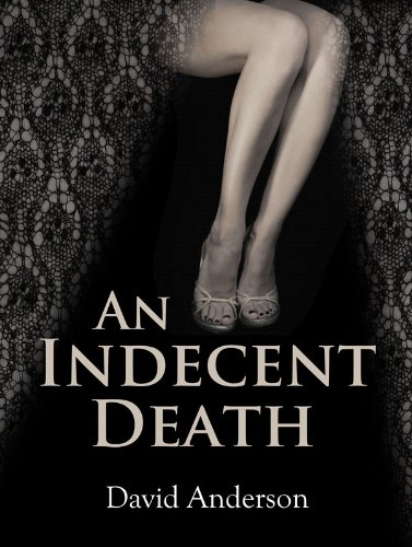 An Indecent Death by David Anderson