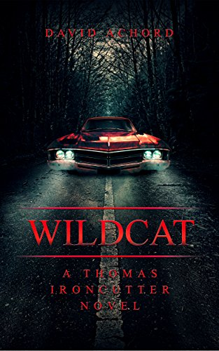 Wildcat: A Thomas Ironcutter Novel by David Achord