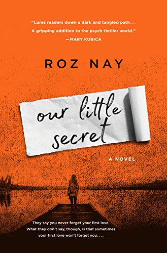Our Little Secret: A Novel by Roz Nay