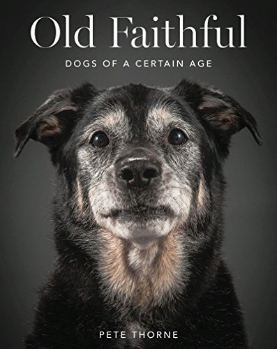 Old Faithful: Dogs of a Certain Age by Pete Thorne