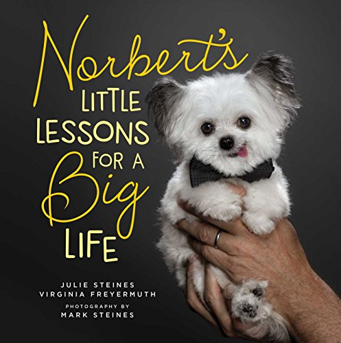 Norbert's Little Lessons for a Big Life by Julie Steines