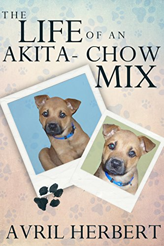 The Life Of An Akita Chow Mix by Avril Herbert