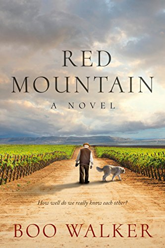 Red Mountain: A Novel by Boo Walker