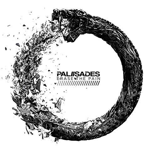 Erase The Pain by The Palisades