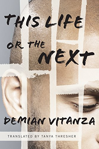 This Life or the Next: A Novel  by Demian Vitanza
