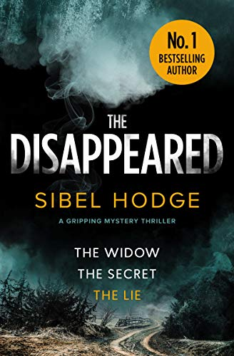 The Disappeared by Sibel Hodge