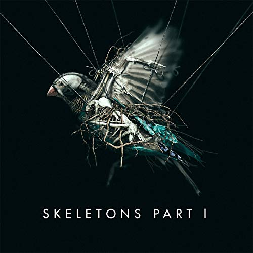 Skeletons: Part 1 by MISSIO
