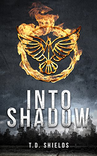 Into Shadow (Shadow and Light Book 1)  by T.D. Shields