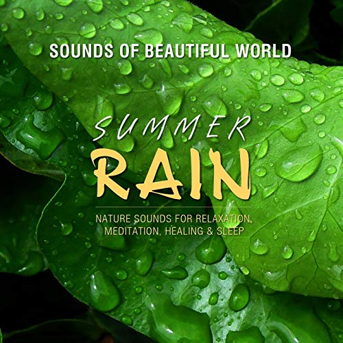 Summer Rain by Sounds of Beautiful World