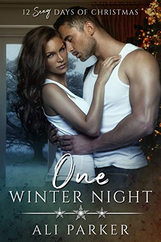One Winter Night by Ali Parker