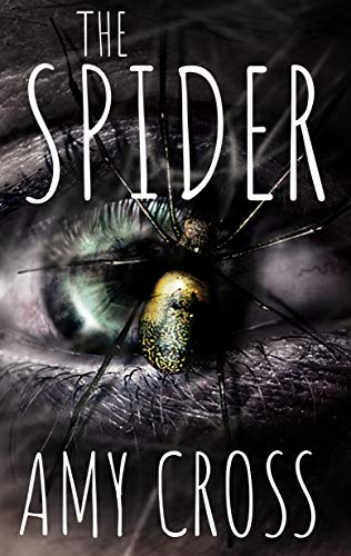 The Spider                                                 by Amy Cross