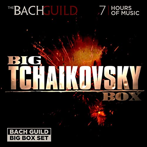 Big Tchaikovsky Box by Various Artists