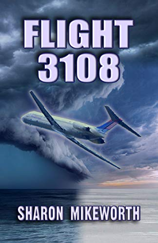 Flight 3108 by Sharon Mikeworth