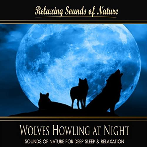 Wolves Howling At Night (Nature Sounds) by Sounds of Nature for Deep Sleep and Relaxation