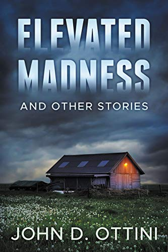 Elevated Madness and Other Stories by John D. Ottini