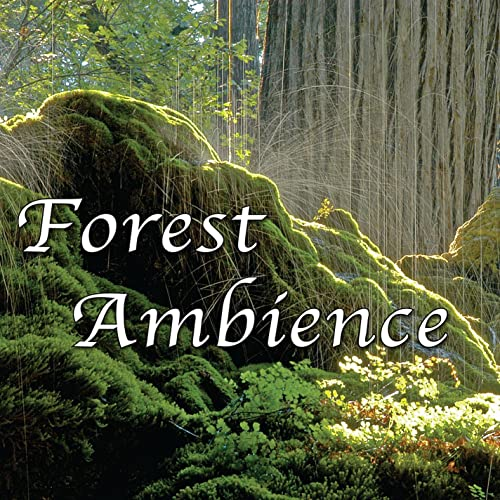 Forest Ambience - Healing Nature Sounds for Relaxation, Massage Therapy, Reiki and Sleep By Natural White Noise - Music for Meditation, Relaxation, Sleep